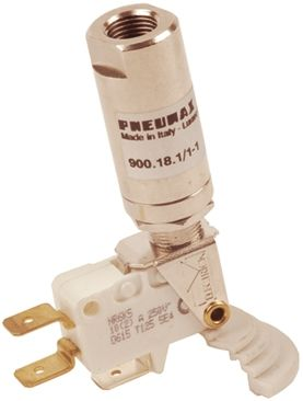 Fixed Pressure Switches N/C - N/O Spade Terminal - 1/8""